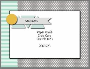 PCCCS105-159-007-300x231