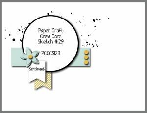 PCCCS105-159-009-300x232