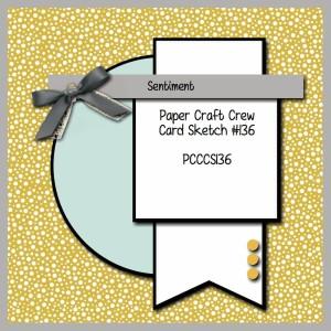 PCCCS106-160-011-300x300