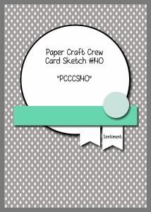 PCCCCS104-158-013-214x300