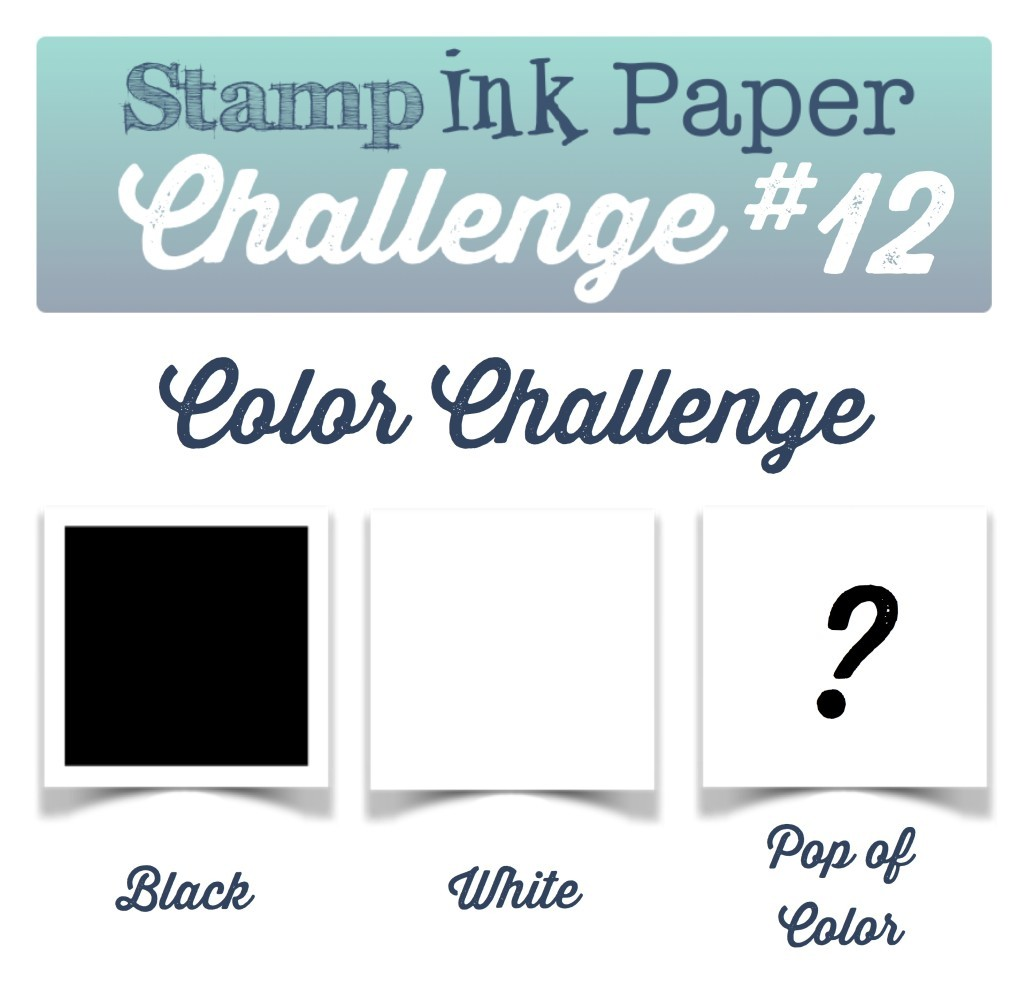 SIP-Color-Challenge-12-1024x986