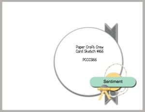 PCCCS-162-205-002-300x232