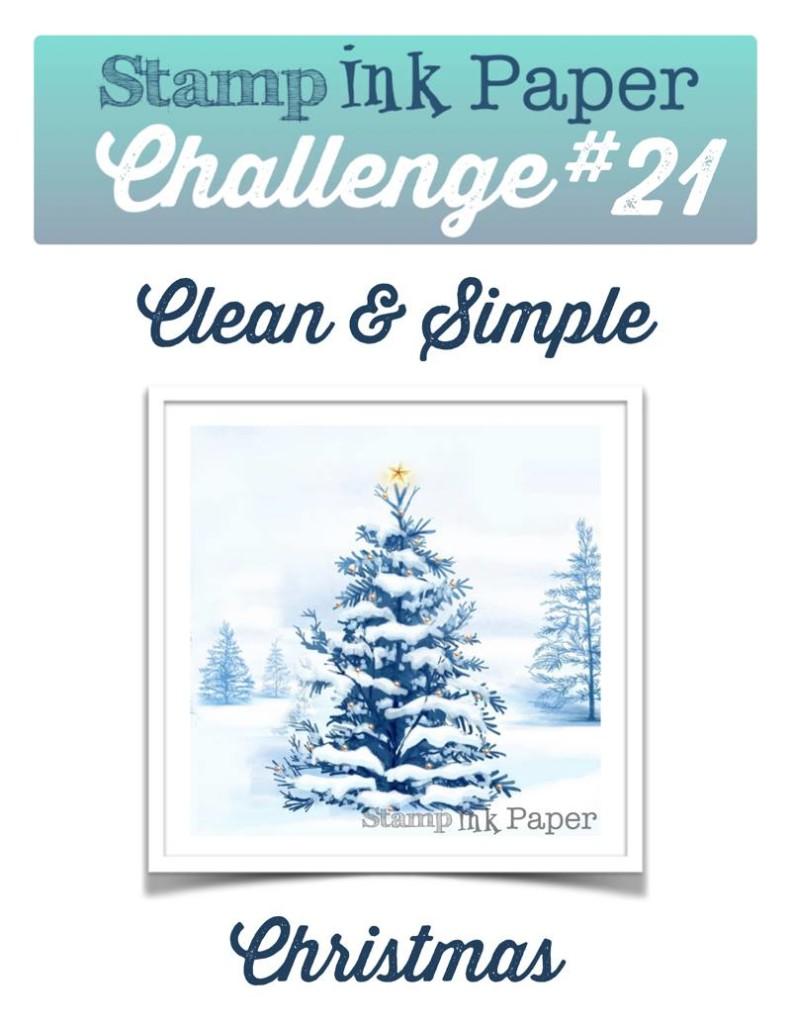 SIP-Challenge-20-CAS-Christmas
