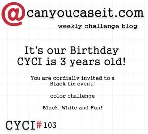 CYCI103-b-300x273