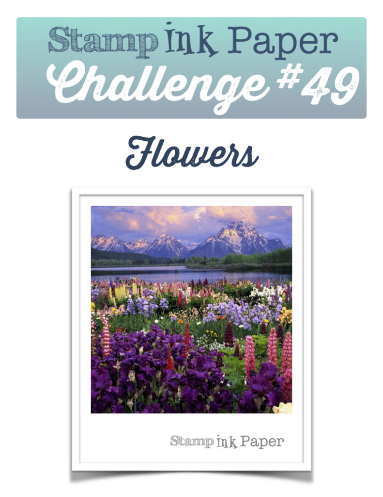 SIP-Challenge-49-Flowers-800-791x1024