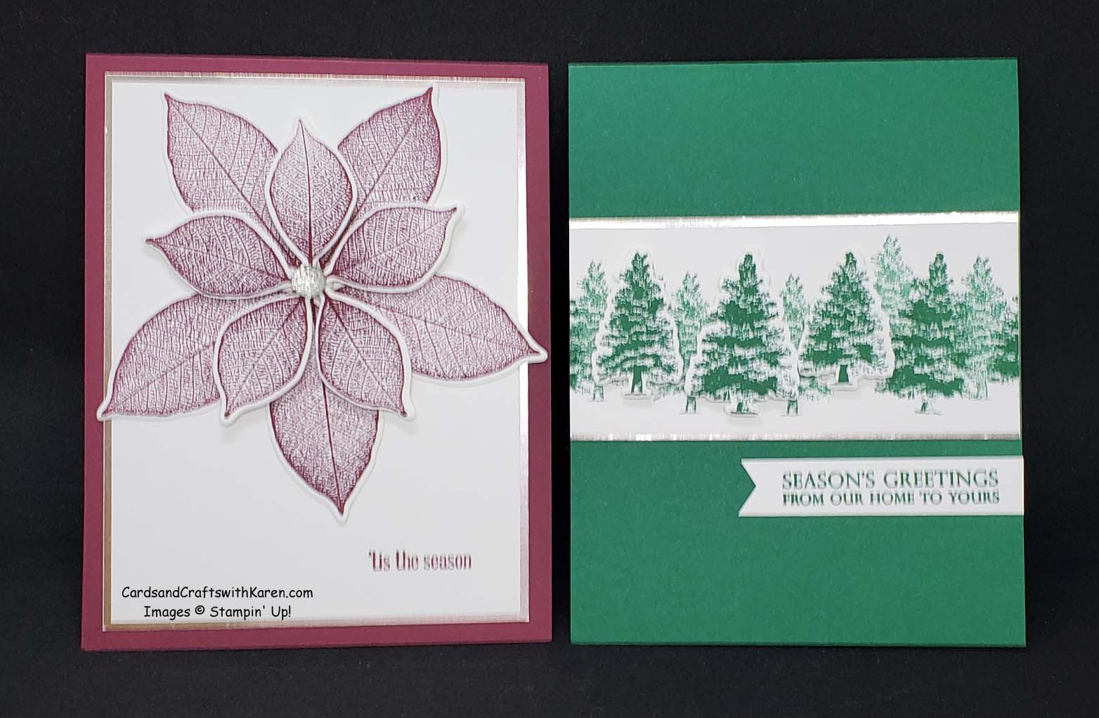 Stampin Up Rooted In Nature Stamp Set And Natures Roots Matching Dies Brand New